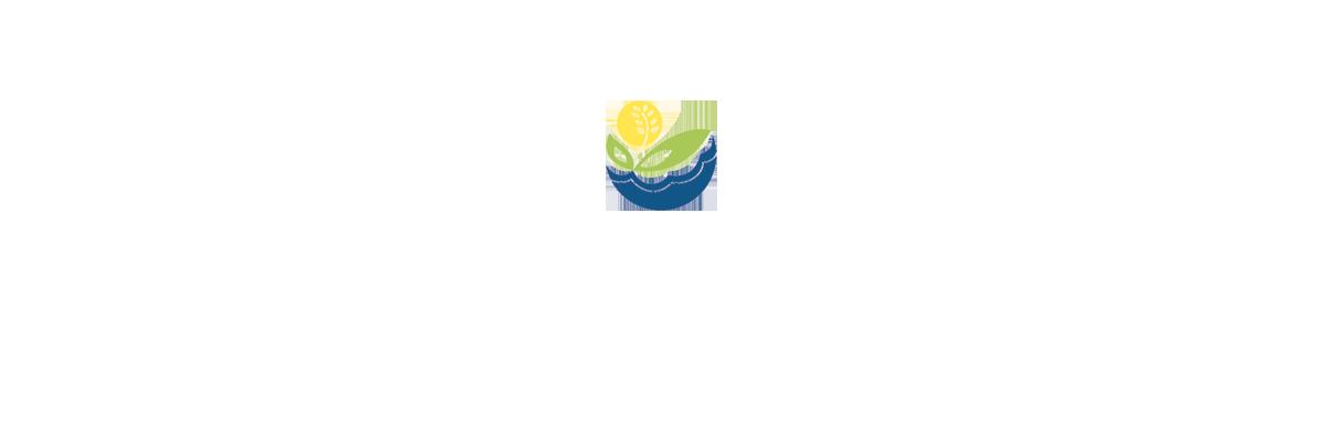 Élection municipale 2019 (logo)